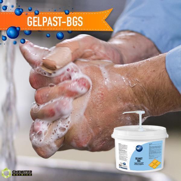 GELPAST-BGS